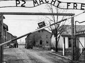 provocazione grillo indigna comunita' ebraiche
