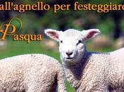 Pasqua 2014 salviamo creature innocenti!