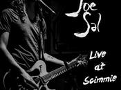 Sal-Live Scimmie