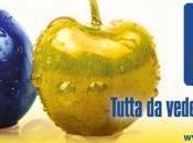 Fiera Modena: sorpresa tira l'altra!