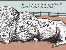 fumetti Dave Eggers: l'insostenibile estro formidabile genio.