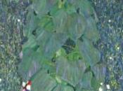 Klimt, alle origini mito Palazzo Reale