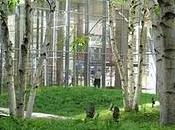 York Times Building Lobby Garden
