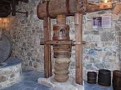 metodi estrarre l'olio dalle olive adottati Giovanni Presta