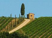 cuore della Toscana Chianti Melini