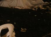Brasile, tifoso ucciso allo stadio lancio water. Confessa 23enne