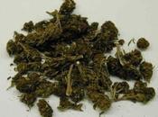 Priolo: denunciato ventenne trovato qualche grammo marijuana