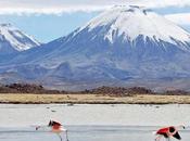 Cile, deserti Nord all'isola Pasqua