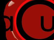 importanti novità Palazzo Marangoni. della Soprintendenza sala museale, intanto sito ufficiale lancia raccolta Tesi laurea conservare nella Biblioteca Cardinal Brancati