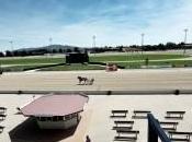 Ippica: grande domenica all'ippodromo Vinovo, Pony Trotto