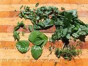 Farro, pomodori Piccadilly, feta, olive Kalamata pesto erbe aromatiche