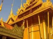 Epifania birmana