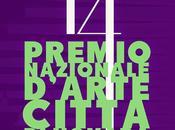 Premio Nazionale d'Arte Città Novara bando
