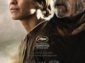 "Cannes 2014: concorso western ""The Homesman"""