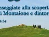 Escursione gratuita cuore della Toscana Free naturalistic excursion Tuscany