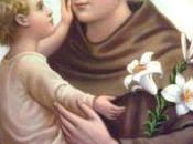 Delizie Sant'Antonio Padova