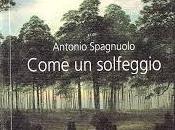 """LIBRI DEGLI ALTRI n.86: Diario dolore. Antonio Spagnuolo, """"Come solfeggio"""""""