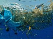 plastica minaccia oceani nostro cibo
