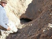 Scoperta tomba accompagnamento Luxor