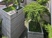 casa della settimana: House trees