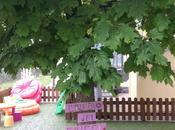 L'albero Ciucci