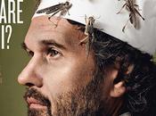 Mangiare insetti moda futuro