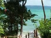Pemba, Zanzibar: eco-Lodge paradiso.