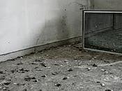 cose accadono televisione, riguardano alcuni scrittori aldo grasso biasimato