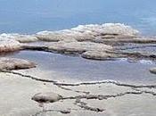 Rischi sale raffinato benefici marino integrale altre alternative
