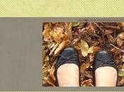 Foglie d'autunno Autumn leaves