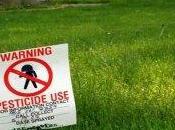 Autismo pesticidi: nuovi studi confermano legame
