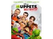 "voglio bene ""Muppets Most Wanted"""
