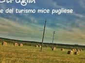MeetPuglia Quotidiano Italiano– Taranto