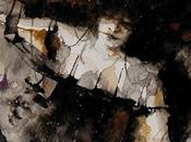 Anteprima: Venus Intervention Corrine Winter Alessandro Manzetti