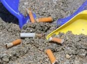 """Estate 2014: """"Marevivo"""", continua campagna contro mozziconi sulle spiagge"""