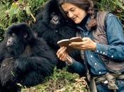 """Dian Fossey, Signora Gorilla"""