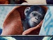 Apes Revolution pianeta delle scimmie. reboot intelligente