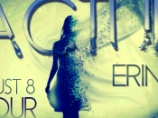 Blog Tour Review: Fractured Erin Hayes
