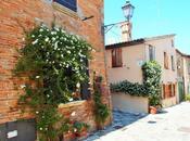 buen retiro nella Santarcangelo antica...la casa Manuela Renzo.