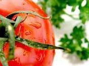 dieta vegetaria
