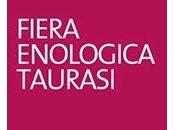 Barolo baffo: Fiera enologica Taurasi 13-17 Agosto 2014