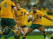 Rugby Championship: Australia invariata ritorno
