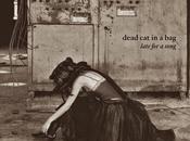 Silence Pure, nuovo singolo Dead