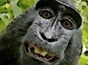 Scimmiottare adulti rimasti bambini
