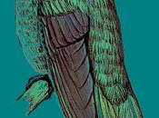 manuale globale riconoscimento degli uccelli