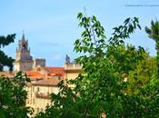 Sulla riva sinistra Rodano, Avignone!