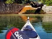 paddle more fun!