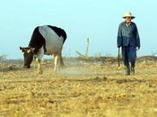 Crisi cibo 2011 fatti preoccupanti