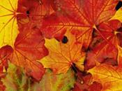Week d'autunno: proposte viaggio
