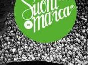Suoni Marca: diciotto giorni musica, spettacolo, enogastronomia